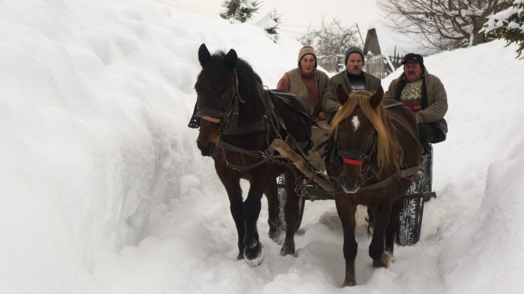 Székelyvarság, 2012. február 15. Lovas kocsi halad a székelyföldi Székelyvarságon (Varsag) 2012. február 15-én, ahol a hóátfúvások miatt hótorlaszok keletkeztek. MTI Fotó: Egyed Ufó Zoltán