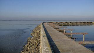 Abádszalók, 2013. november 28. A Szalók Yacht Klub kikötõje a Tisza-tó Attila-öblében Abádszalóknál 2013. november 28-án. A Közép-Tisza-vidéki Vízügyi Igazgatóság az elmúlt hetekben több mint 160 millió köbméter vizet engedett le a tóból, és a 725 centiméteres nyári vízszinthez képest a téli idõszakban bevált 560 centiméteres értékre apasztotta a Tisza-tavat. A vízszint változtatását az indokolja, hogy télen a magas vízszint tartása árvízvédelmi szempontból nagyobb kockázatot jelent. MTI Fotó: Czeglédi Zsolt