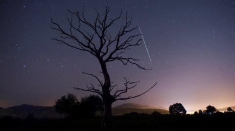 Villanueva de la Pena, 2017. november 16. A Leonidák meteorraj egyik hullócsillaga csíkot húz az égen az észak-spanyolországi Villanueva de la Pena településrõl fényképezve 2017. november 16-ra virradóra. A rövid, koncentrikus vonalak csillagok és bolygók. A Leonidákat a Temple-Tuttle-üstökös hullajtja el, amikor 33 évenként a Nap közelébe ér, és elillan a gáz- és poranyaga, az abból származó apró szilárd részecskék pedig nagyon lassan szétszóródó törmelékfelhõt alkotnak, amelyen a Föld a Nap körüli pályáján minden novemberben áthalad. A meteorraj onnan kapta a nevét, hogy az oroszlán csillagkép, a Leo irányából látszik érkezni. (MTI/EPA/Pedro Puente Hoyos