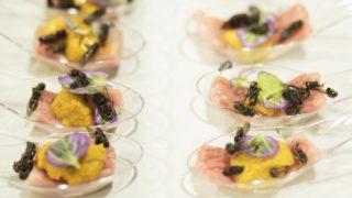 New York, 2017. november 15. Darazsakkal meghintett vagjumarha-falatkák japán tormaszósszal Joseph Yoon dél-koreai-amerikai szakács Brooklyn Kitchen nevû New York-i éttermében 2017. november 13-án. Az elõkelõ étteremben Yoon látványos ételekkel kedveskedik vendégeinek, akik kedvükre válogathatnak skorpió és különféle rovarok, mint például lódarazsak, lisztbogár lárvák, tücskök és szöcskék felhasználásával készült fogások közt. A kulináris élményt kínáló séf a rendhagyó alapanyag-választást a személyes alkotói kedven túl az emberi rovarfogyasztás hosszú távú ökológiai elõnyeivel indokolja. (MTI/EPA/Justin Lane)