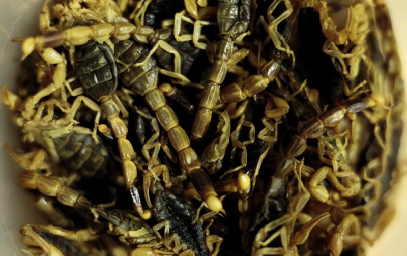 New York, 2017. november 15.Előkészített mandzsúriai skorpiók Joseph Yoon dél-koreai-amerikai szakács Brooklyn Kitchen nevű New York-i éttermében 2017. november 13-án. Az előkelő étteremben Yoon látványos ételekkel kedveskedik vendégeinek, akik kedvükre válogathatnak skorpió és különféle rovarok, mint például lódarazsak, lisztbogár lárvák, tücskök és szöcskék felhasználásával készült fogások közt. A kulináris élményt kínáló séf a rendhagyó alapanyag-választást a személyes alkotói szenvedélyen túl az emberi rovarfogyasztás hosszú távú ökológiai előnyeivel indokolja. (MTI/EPA/Justin Lane)