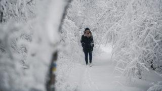 Pécs, 2017. december 9. Behavazott erdõben sétál egy nõ a Mecsekben, Pécs közelében 2017. december 9-én. MTI Fotó: Sóki Tamás