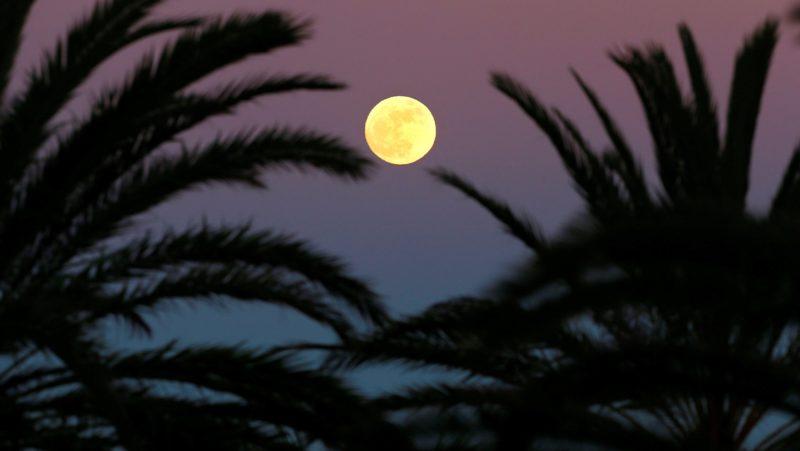 Alicante, 2018. január 2. Közeli telihold, úgynevezett szuperhold ragyog a kelet-spanyolországi Alicante felett 2018. január elsején. A szuperhold kifejezés az ellipszis alakú holdpálya Földhöz legközelebbi pontján bekövetkezõ telihold fázist jelöli, amikor az égitest a pályájának legtávolabbi pontjához képest nagyjából ötvenezer kilométerrel közelebb van a Földhöz, ezért az átlagosnál mintegy 14 százalékkal nagyobbnak látszik. (MTI/EPA/Manuel Lorenzo)
