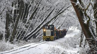 Bánokszentgyörgy, 2018. február 20. A Csömödéri Állami Erdei Vasút tehervonata közlekedik Bánokszentgyörgy és Oltárc között Csömödér irányába 2018. február 20-án. A Zalaerdõ Zrt. erdei vasúthálózata mintegy 109 kilométer hosszúságban hálózza be a megye erdeinek egy részét. Jelentõs mennyiségû faanyagot szállít Lenti és Csömödér fafeldolgozó üzemeibe, valamint a MÁV vonalhoz csatlakozva távolabbi helyekre is eljuttatja a kitermelt fát. MTI Fotó: Máthé Zoltán