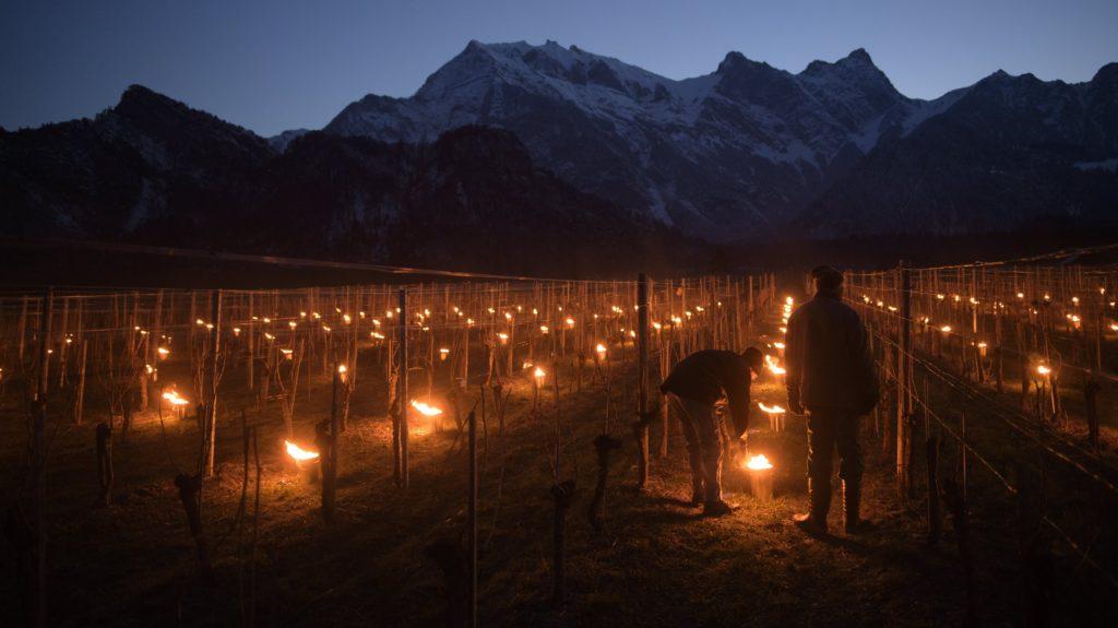 Fläsch, 2018. március 22. Szõlõültetvényeket melegítenek a fagy elleni védekezésül a svájci Graubünden kantonban fekvõ Fläschben 2018. március 22-én hajnalban. (MTI/EPA/Gian Ehrenzeller)