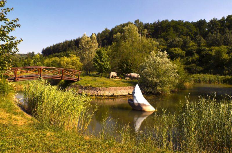 Ipolytarnóc, 2017. június 24. Az Ipolytarnóci Õsmaradványok Természetvédelmi Terület Kõzetparkjának részlete. MTVA/Bizományosi: Nagy Zoltán  *************************** Kedves Felhasználó! Ez a fotó nem a Duna Médiaszolgáltató Zrt./MTI által készített és kiadott fényképfelvétel, így harmadik személy által támasztott bárminemû – különösen szerzõi jogi, szomszédos jogi és személyiségi jogi – igényért a fotó készítõje közvetlenül maga áll helyt, az MTVA felelõssége e körben kizárt.