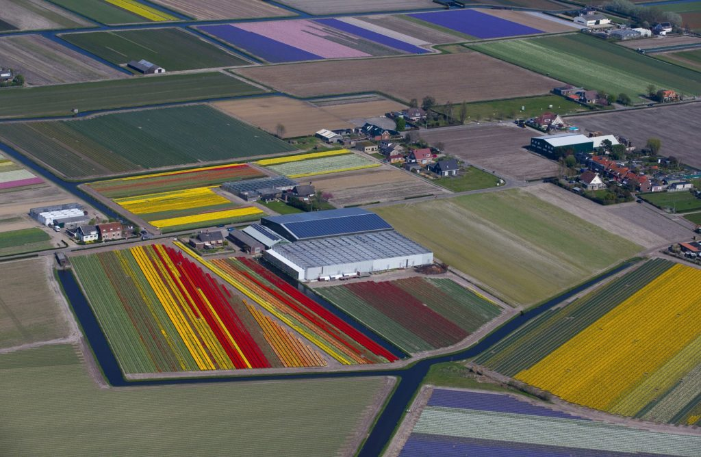 Lisse, 2018. április 20. Tarka virágmezõk a hollandiai Lisse mellett elterülõ Keukenhofban 2017. április 20-án. A világ legnagyobb  tavaszi kertjeként ismert, 32 hektáron elterülõ virágparkban idén több mint hétmillió tulipán, jácint és nárcisz virágzik. (MTI/AP/Peter Dejong)