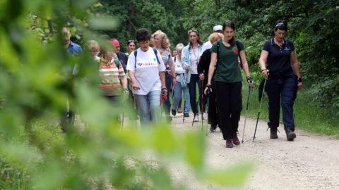 Miskolc, 2018. május 22. Túrázók a szívbetegek rehabilitációját segítõ új tanösvényen Miskolcon, a bükki Csanyik-völgyben az átadás napján, 2018. május 22-én. A Budapesti Szent Ferenc Kórház Út az egészséghez programjának harmadik, egyben elsõ vidéki tanösvénye a szív- és érrendszeri betegek, magas vérnyomással élõk, valamint cukorbetegek rehabilitációját segíti. MTI Fotó: Vajda János
