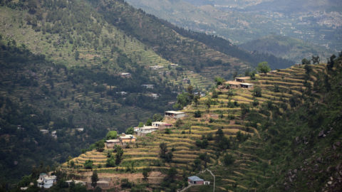 In this picture taken on May 18, 2018, shows houses in a forest area of the Swat valley of Khyber Pakhtunkhwa in northwest Pakistan. The change is drastic: around the region of Heroshah, previously arid hills are now covered with forest as far as the horizon. In northwestern Pakistan, hundreds of millions of trees have been planted to fight deforestation.  / AFP PHOTO / FAROOQ NAEEM / To go with 'PAKISTAN-ENVIRONMENT-TREE,FOCUS' by Joris FIORITI