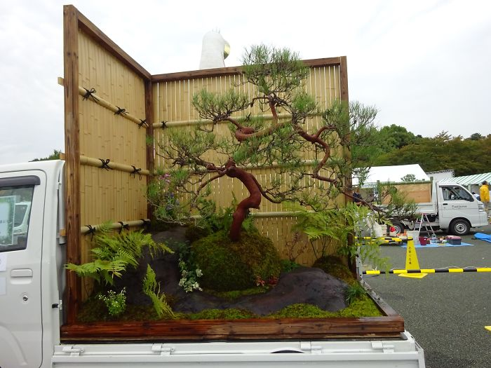 japanesee-kei-truck-garden-contest-5b1e4ae978480__700.jpg
