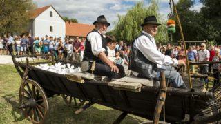 Nemeshany, 2017. augusztus 13. Szekéren hozzák a búzát a Magyarok kenyere program keretében összegyûjtött búza összeöntési ünnepségére Nemeshanyban 2017. augusztus 13-án. MTI Fotó: Bodnár Boglárka