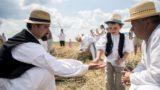 Mohács, 2018. július 14. Résztvevõk a Mohácsi Polgárok Olvasókörének hagyományos aratóünnepén Mohács közelében 2018. július 14-én. MTI Fotó: Sóki Tamás