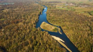 """River Mura hosts the richest fish biodiversity (51 fish species) and biggest floodplain forests in Slovenia. It is part of the future 5-country UNESCO Transboundary Biosphere Reserve Mura-Drava-Danube or """"Amazon of Europe""""."""