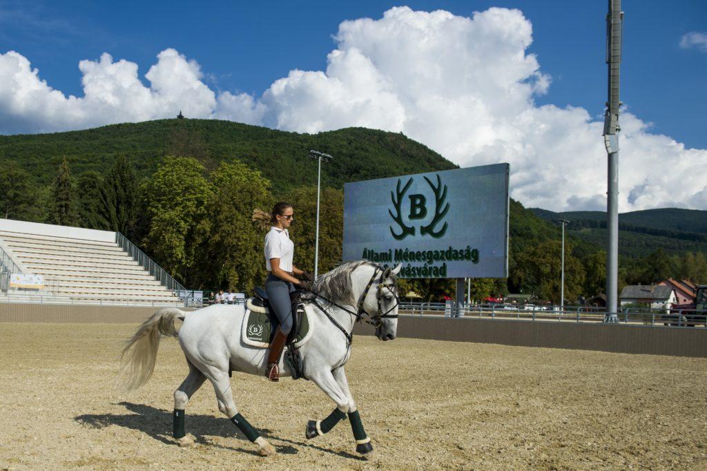 Szilvásvárad, 2018. augusztus 17. Egy lovas az új lipicai lovasközpontban Szilvásváradon a megnyitó elõtti napon, 2018. augusztus 17-én. MTI Fotó: Komka Péter