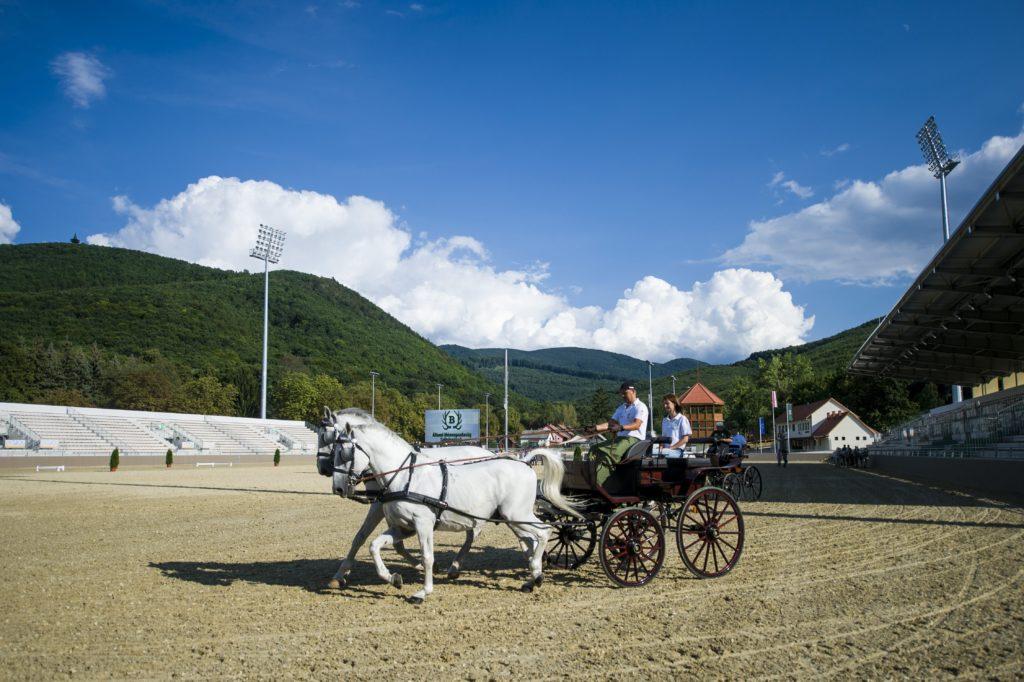 Szilvásvárad, 2018. augusztus 17. Kettes fogat az új lipicai lovasközpontban Szilvásváradon a megnyitó elõtti napon, 2018. augusztus 17-én. MTI Fotó: Komka Péter