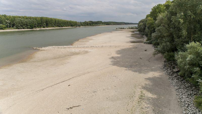 Vámosszabadi, 2018. augusztus 14. A Duna ártere alacsony vízállásnál Vámosszabadi határában 2018. augusztus 14-én. MTI Fotó: Krizsán Csaba
