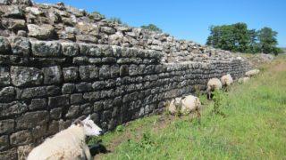 Birdoswald Fort, 2018. augusztus 21. 2018. augusztus 21-én közreadott kép Hadrianus falának maradványairól az észak-angliai Birdoswald Fort közelében július 3-án. A falat Hadrianus római császár parancsára 122-ben kezdte építeni a római hadsereg és nyolcévnyi munkájukba telt. A fal 120 kilométer hosszú, mintegy 4,5 méter magas, 3 méter széles, egyik tengerparttól a másikig húzódik Corbridge-tõl a nyugaton fekvõ Carlisle-ig. (MTI/AP/Jerry Harmer)