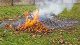 Smoke and fire from during Burning of garden waste