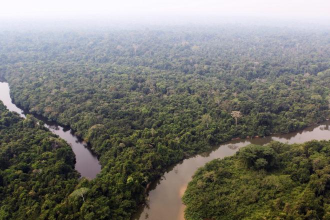 70911223. Río de Janeiro, 11 Sep. 2017 (Notimex-IBAMA).- Unos 10 indígenas pobladores de zonas aisladas de Brasil habrían sido ultimados por gambusinos en una remota región del oeste del Amazonas brasileño, cerca de la frontera con Perú, dijeron hoy autoridades, en un nuevo incidente que cuestiona la protección de la zona. NOTIMEX/FOTO/IBAMA/COR/HUM/