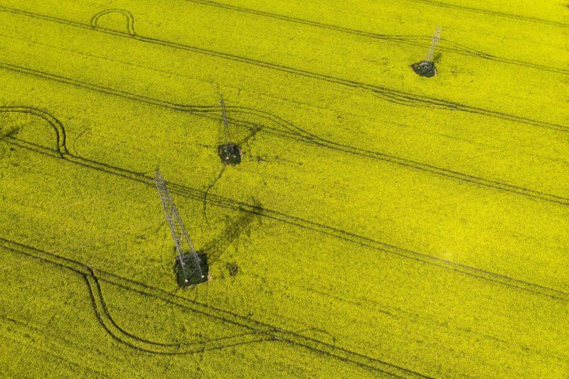 Vép, 2018. április 25. Virágzó repceföld a Vas megyei Vép határában 2018. április 25-én. MTI Fotó: Varga György