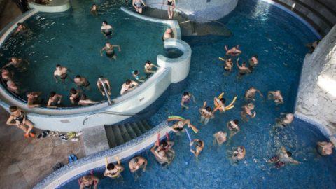 Zalakaros, 2012. január 12. Fürdõzõk várják, hogy a marketingigazgató pénzt szórjon a MenDan Hotel Zalakaros fürdõ medencéjébe, amit a vendégek majd begyûjthetnek. A marketing akcióban 300.000 forintot szórtak a fürdõzõ vendégek közé, hogy közvetlenül jusson vissza a befizetett pénz hozzájuk. MTI Fotó: Varga György