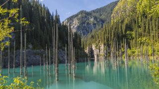 Kaindy Lake known also as Birch Lake in Kazakhstan.
