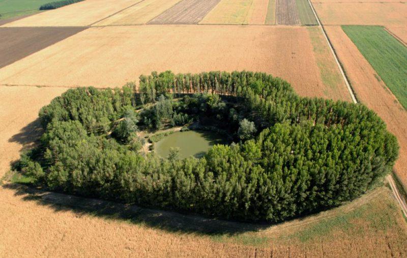Nagyhegyes, 2009. augusztus 24. A település határában, az  egykori gázkitörés helyszínén, a szív alakú kráter körül, kerekded erdõt alkotott a természet. (Légi felvétel). MTI Fotó: H. Szabó Sándor