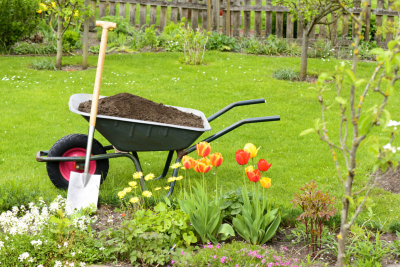 Wheelbarrow with compost for the flowerbeds