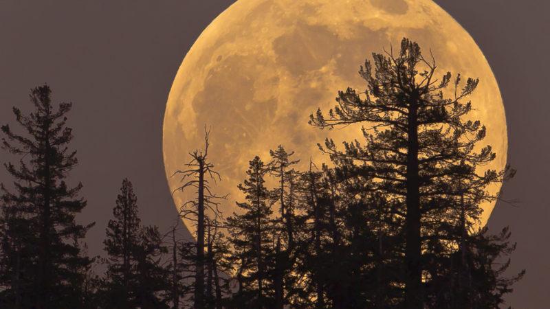 Supermoon rising in Yosemite