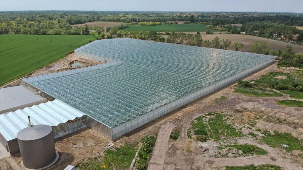 Gyõr, 2019. május 24. A GreenCoop Hungary Kft. új üvegháza Gyõrben, az ünnepélyes átadás napján, 2019. május 24-én. A 2,5 milliárd forintból, öt hektáron felépített üvegházban évente mintegy kétezer tonna paradicsom terem. MTI/Krizsán Csaba
