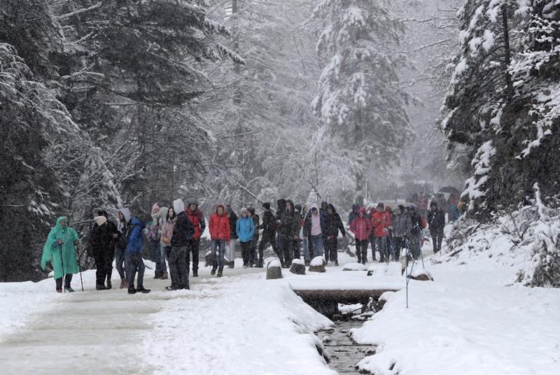 Zakopane, 2019. május 14. Hóesésben sétálnak emberek a lengyelországi Zakopanében 2019. május 14-én. MTI/EPA-PAP/Grzegorz Momot