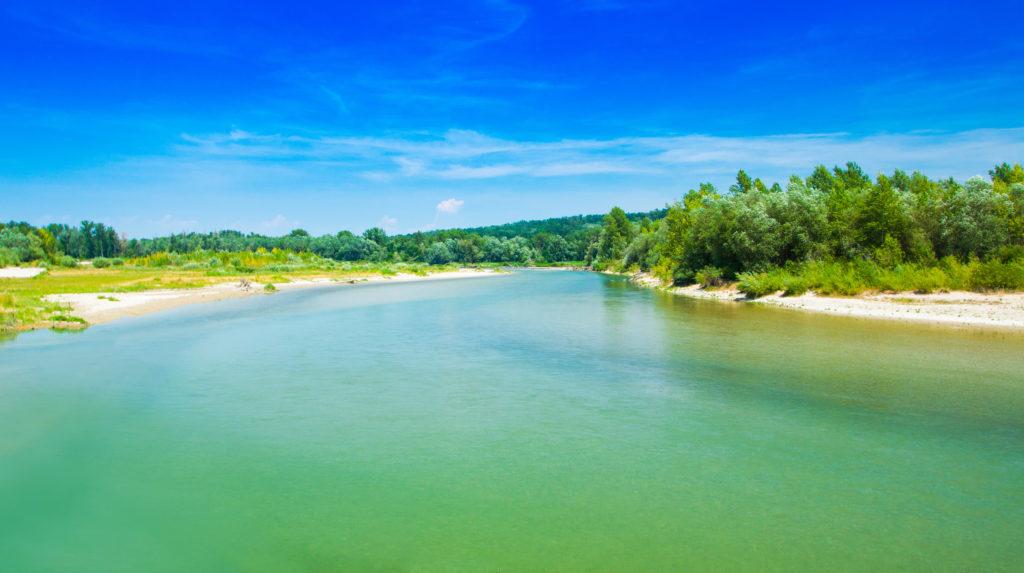 Beautiful wild landscape, confluence of Mura and Drava rivers in Medjimurje, Croatia. Green trees jungle.