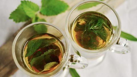 legjobb tea, hogy karcsúsítson)