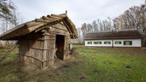 120 éve született a Tüskevár és Matula bácsi megálmodója