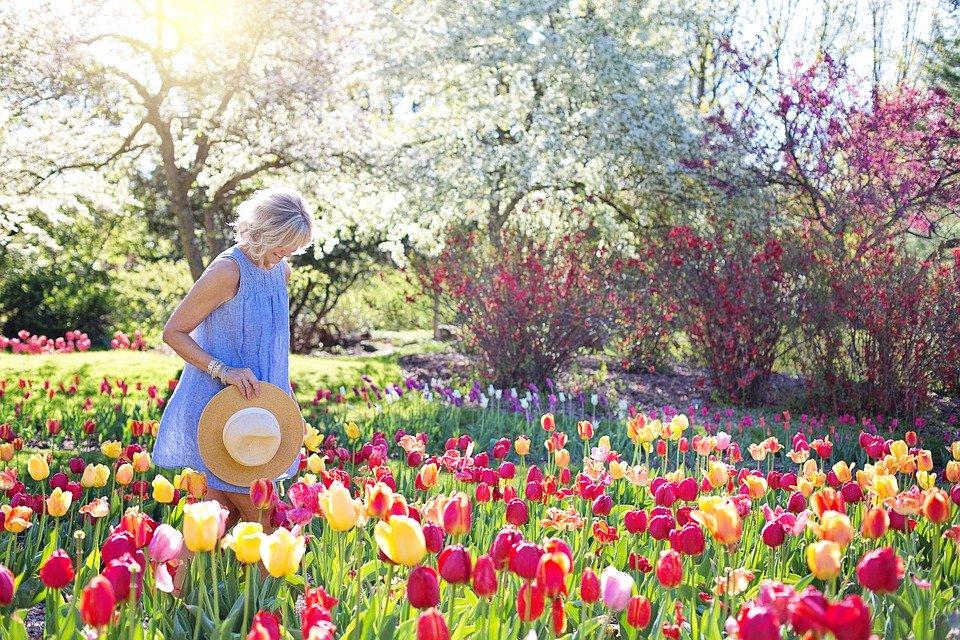 Mire figyeljünk a virághagymák őszi ültetésekor?