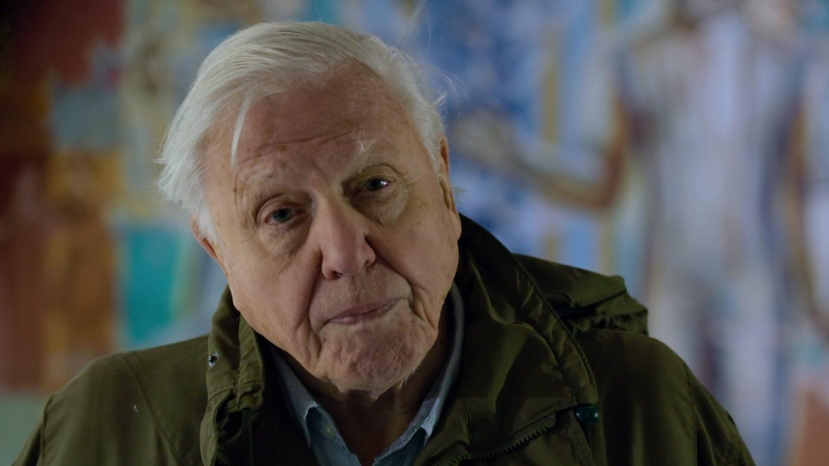 1954 óta dolgozik fáradhatatlanul a ma 93 éves Sir David