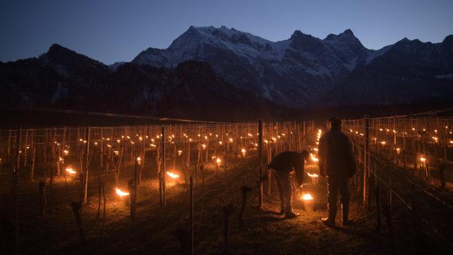 Fläsch, 2018. március 22.Szőlőültetvényeket melegítenek a fagy elleni védekezésül a svájci Graubünden kantonban fekvő Fläschben 2018. március 22-én hajnalban. (MTI/EPA/Gian Ehrenzeller)