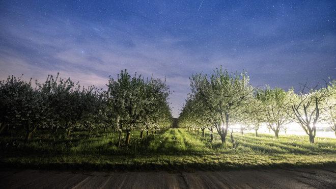 Palkonya, 2018. április 20.A palkonyai Mokos Pincészet gyümölcsösében permetező traktor fényei láthatók 2018. április 19-én éjszaka.MTI Fotó: Sóki Tamás