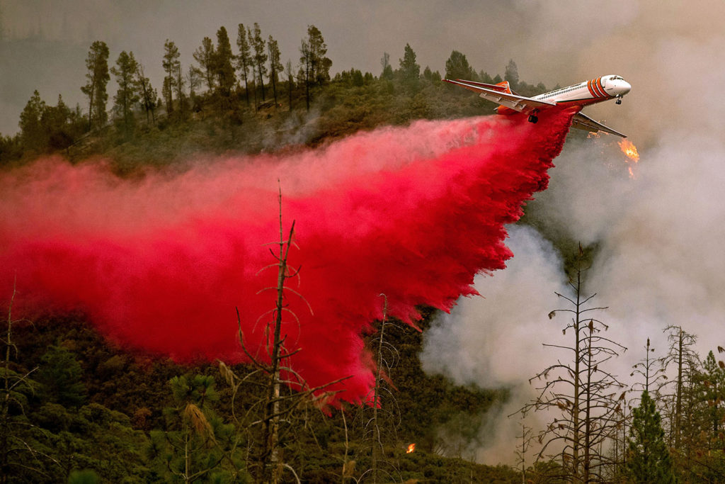 Tűzoltó repülöről oltják a Yosemite Nemzeti Parkbtól nem messze fekvő Stanislaus Nemzeti Parkban pusztító, Ferguson névre keresztelt erdőtüzet. Fotó: AFP / Noah Berger