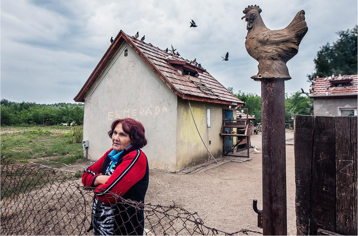 Horváth Zoltánné Marika, tanyája udvarán. - Cegléd, 2015. szept. 10., csütörtök / Szabad Föld fotó: Ujvári Sándor
