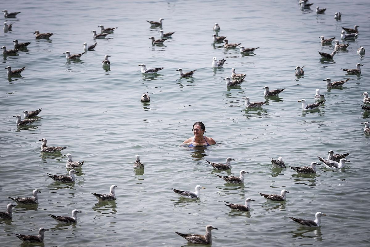 Almada, 2018. augusztus 5. Sirályok közt úszik egy nő a portugáliai Almada település Caparica tengerpartján 2018. augusztus 4-én, amikor a napi csúcshőmérséklet elérte a 45 Celsius-fokot. (MTI/EPA/Rodrigo Antunes)