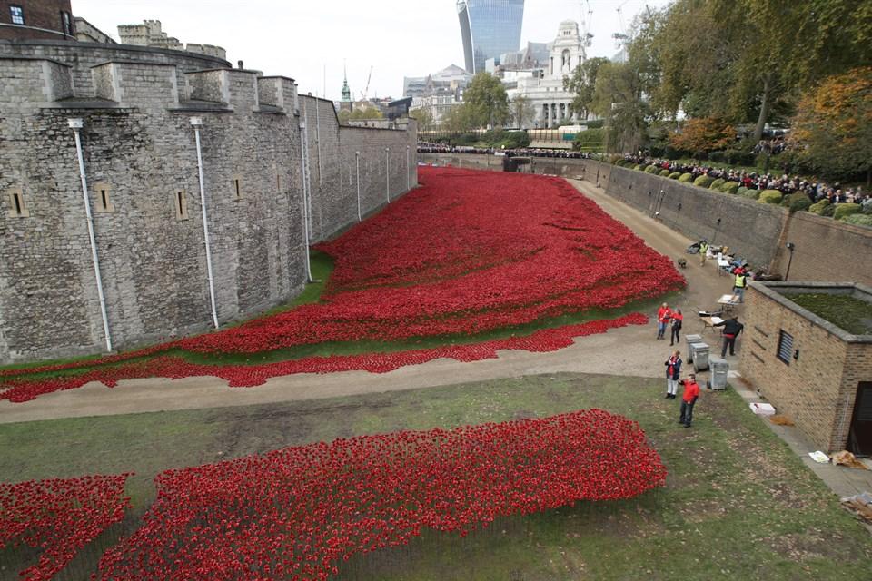 Pipacsok-a-Towerben(960x640).jpg (angliai magyarok, pipacs, Tower, London, világháború, )