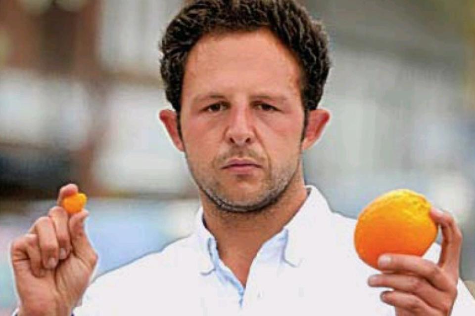 narancshéj (Array)