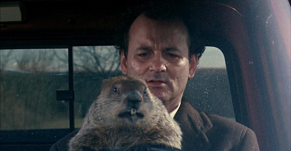 1113groundhog2